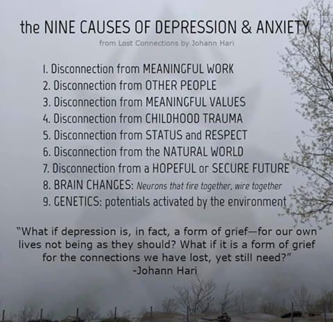The 9 causes of depression and anxiety - Johann Hari